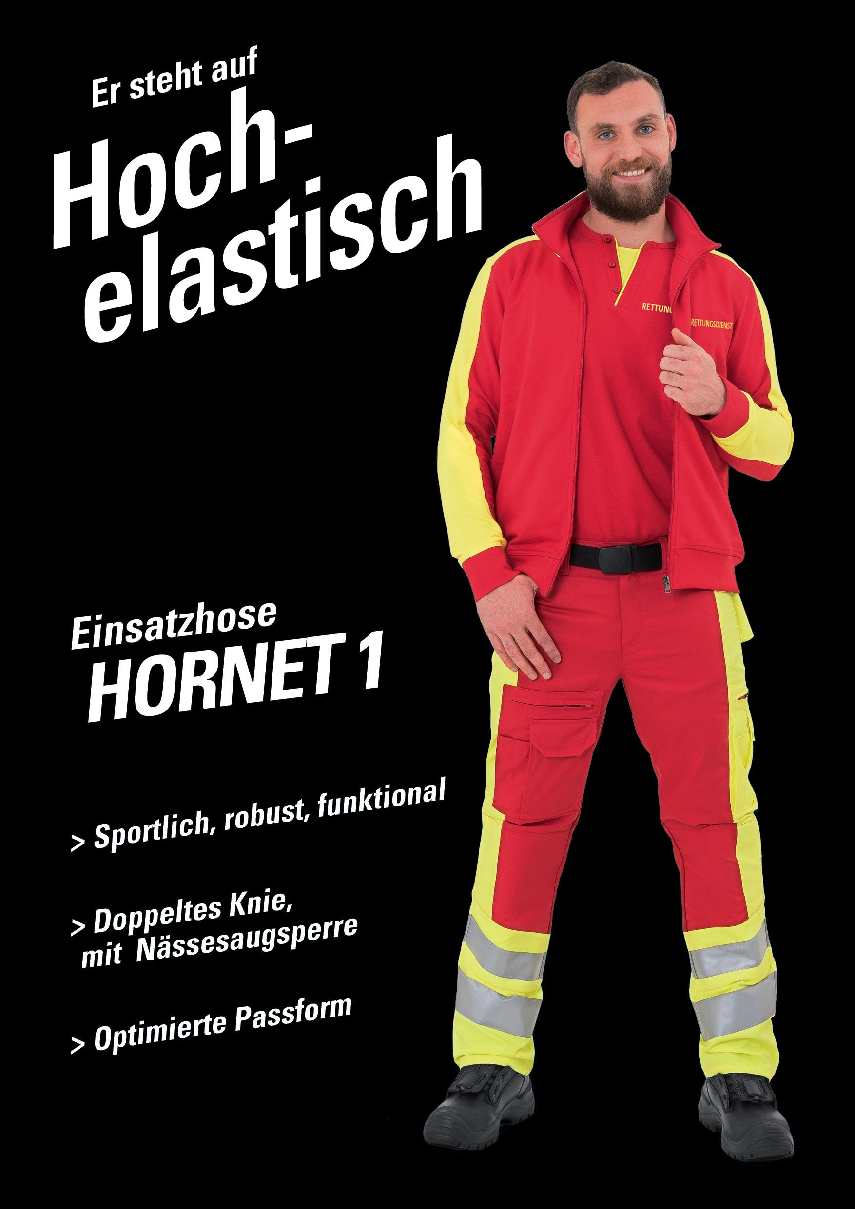 web-werbung-Hornet1